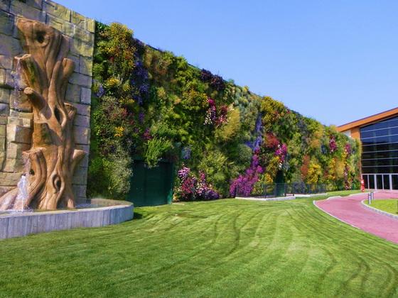 Вертикальный сад в Италии попал в книгу рекордов