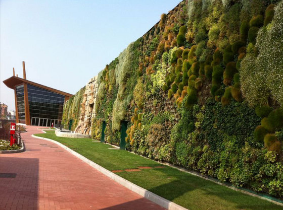 Сад-рекордсмен занимает площадь в 1263 кв.м.