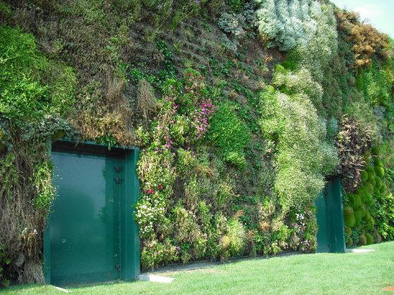 Крупнейший вертикальный сад в мире