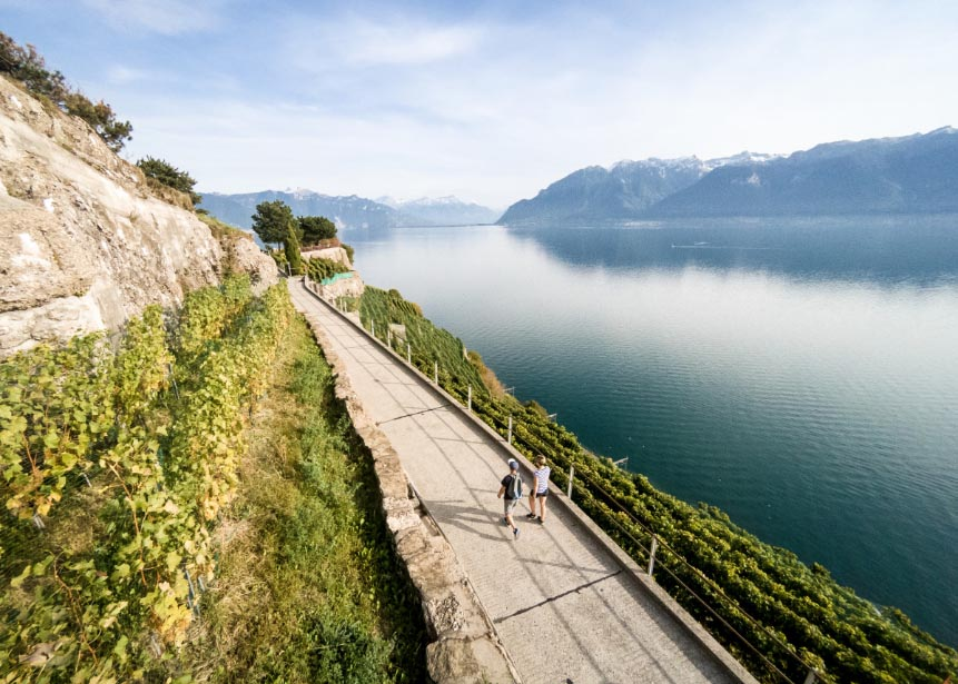 Lavaux Dézaley - 2017 Route du Rhône n°1 - SuisseMobile Photographer: David Carlier